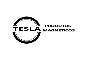 Tesla Imãs cliente SEO da agência e-nova
